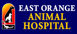 East Orange Animal Hospital